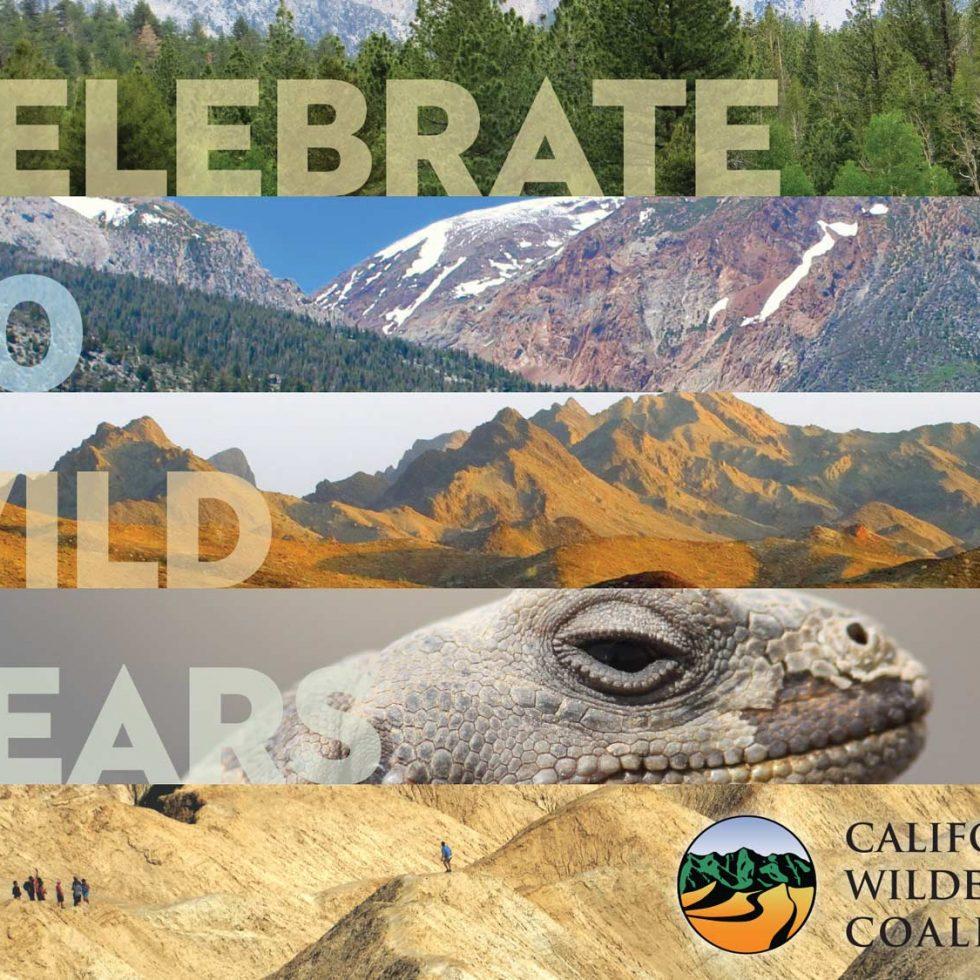 featured-calwild-40-postcard6x8-final-1