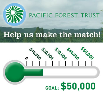 Help us make the match: donate today!