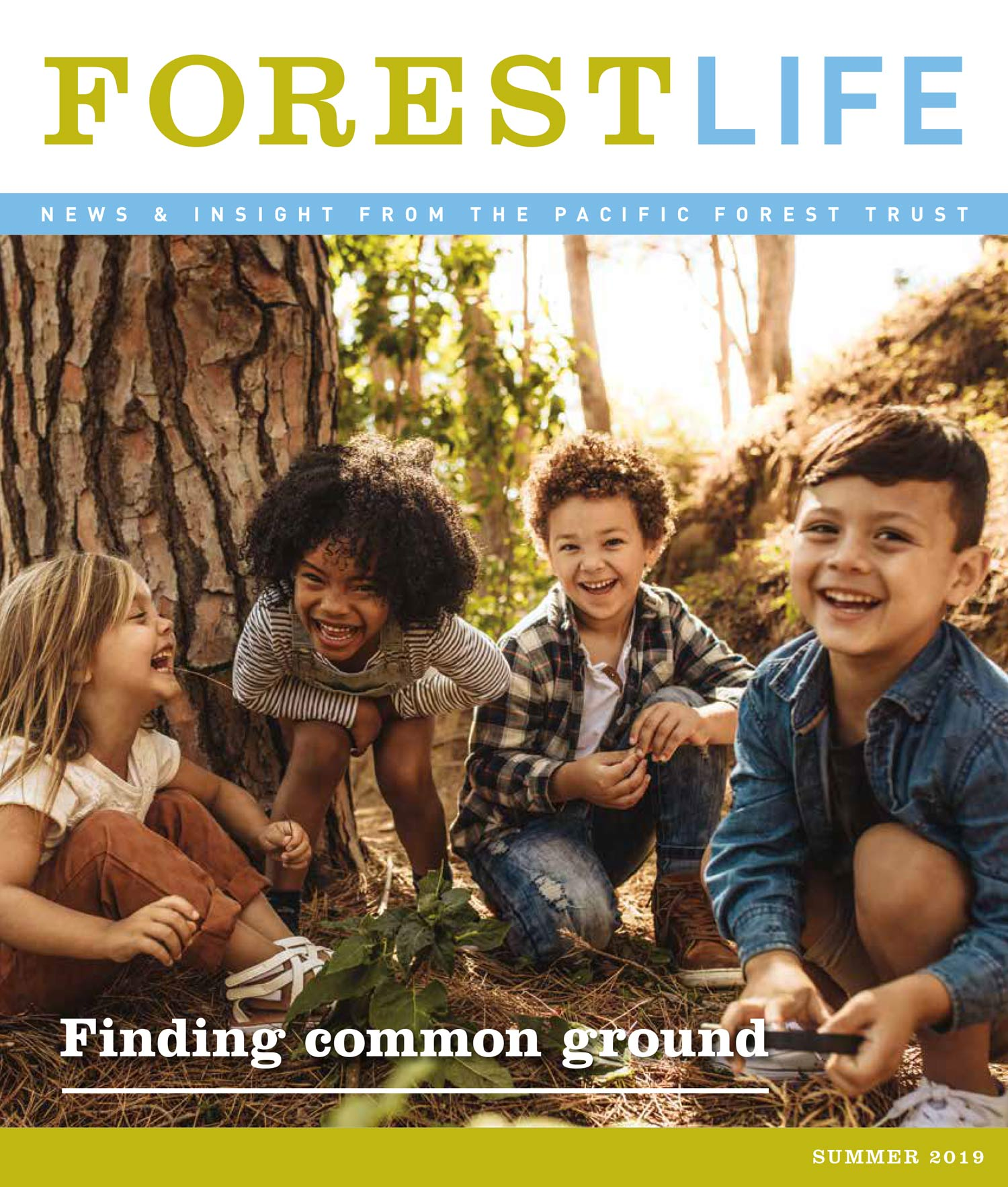 Forest Life 2019